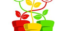 Plantpots Playgroup