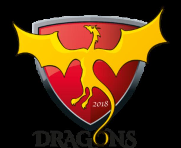 MFA Dragons - Under 8's Football Training
