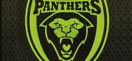 Santos Panthers FC