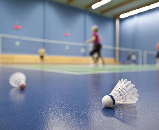 Private Badminton