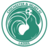 Football Training - Chichester City Ladies and Girls Football Club