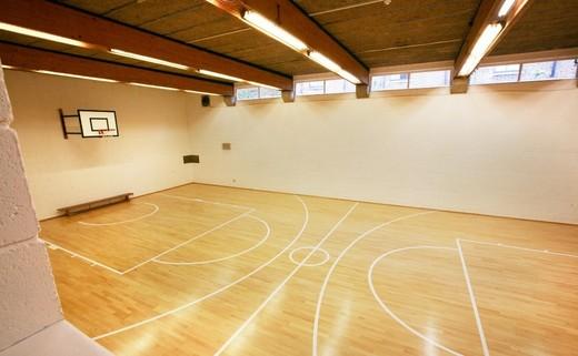 Regular sports hall image 2