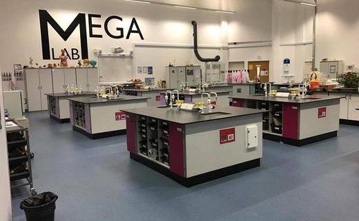 Regular 10a. mega lab