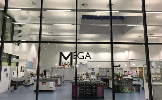 Regular 10. mega lab