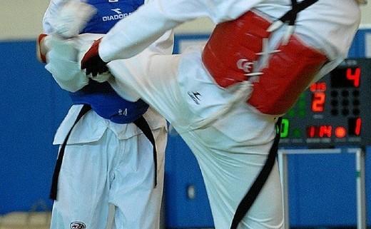 Tae Kwon-Do Classes