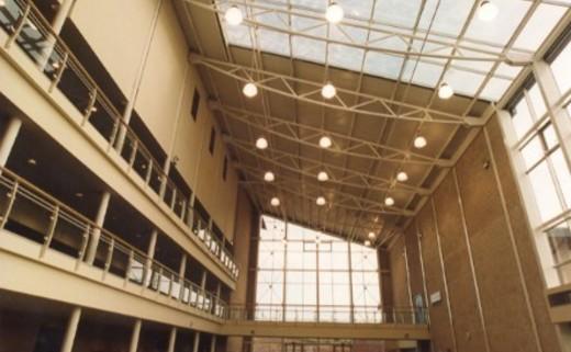 Regular atrium 3