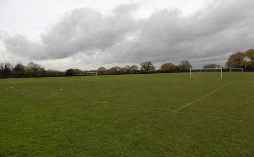 Regular grass pitches