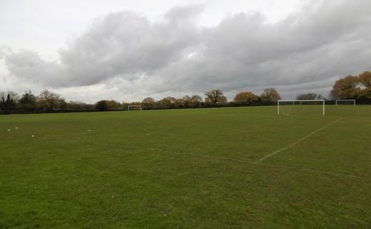 Regular grass pitches