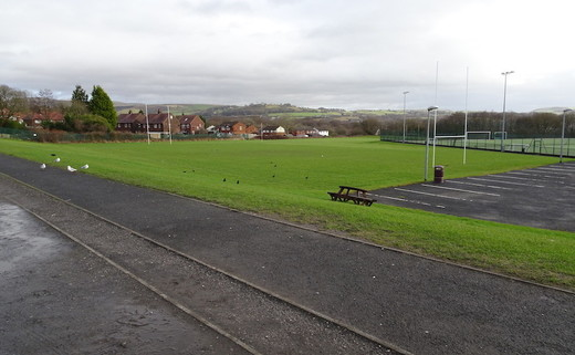 Regular woodhey   grass pitches  2