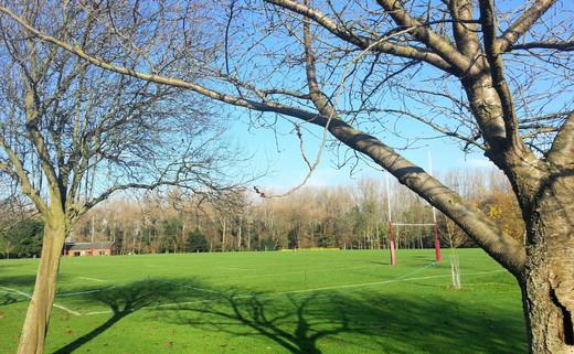 Regular 5. rugby pitch