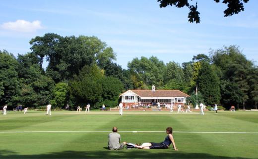 Regular 6. first cricket pitch