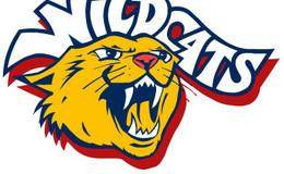 Wakefield Wildcats Netball