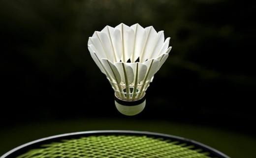 Kids Badminton Club