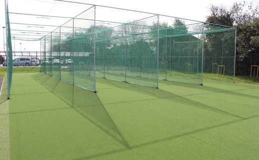 Regular crest   cricket nets thumbs