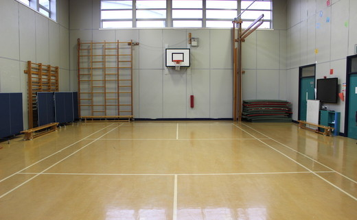 Regular chorlton gymnasium th