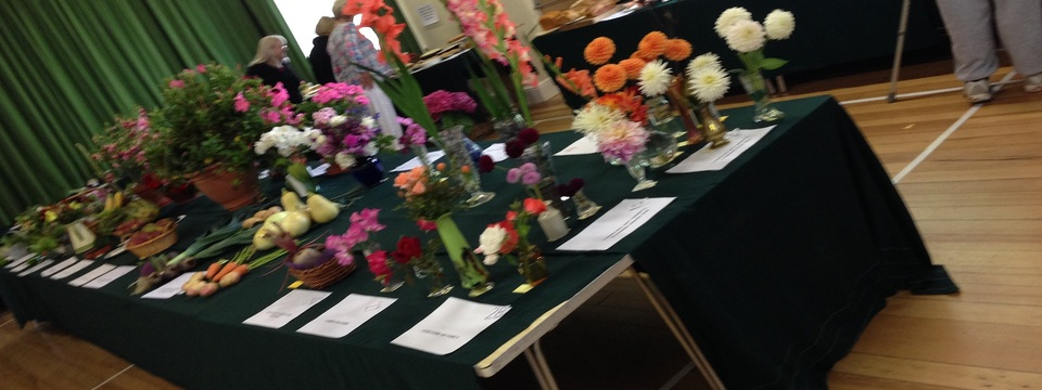 Regular horticultural show 2014 hp